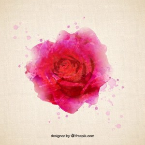 rose-in-watercolor-style_23-2147506244